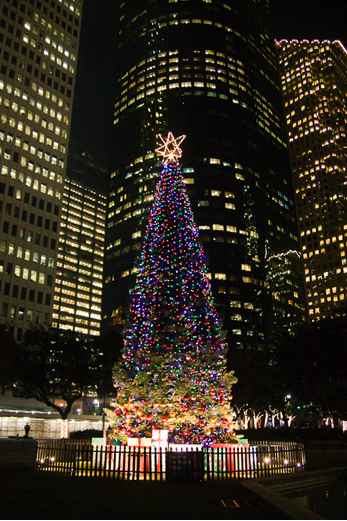 Houston's Tree  By photine on Flickr