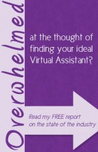 State of the Industry Report on Virtual Assistance