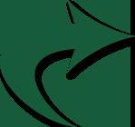 cletch-green-arrow-trans