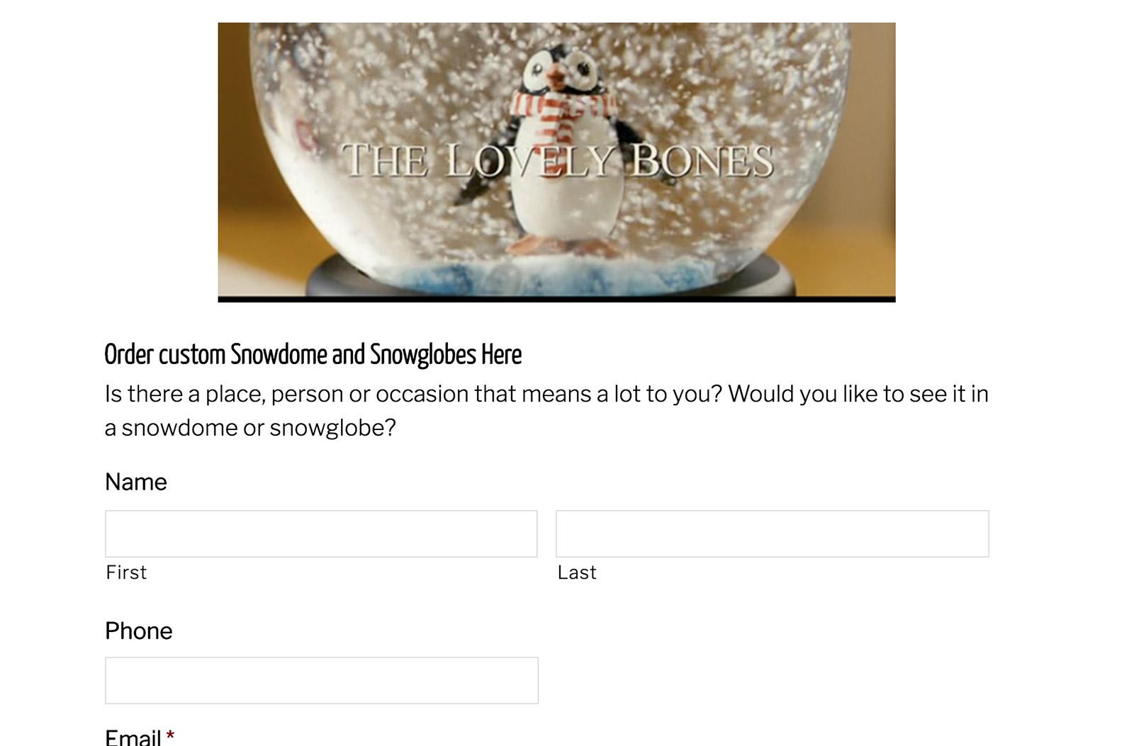 Custom-snowdomes.com Order Form
